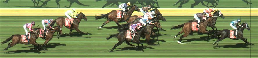 🏆🏆🏆🏆🏆🏆🏆 Sandown Race 7 No.3 Ringerdingding @ $3.30 (2.18 UNITS WIN)   Result :  1st  at SP $2.90, Best Tote $2.90, Betfair $2.98. From the tail, was one of widest on the turn and exploded at the 300m mark and wore down the leaders to win by a length on the line. Impressive. Outcome +7.19 Units.