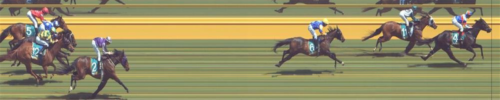 Donald Race 3 No.7 Florida Mist @ $3.40 (2.09 UNITS WIN)   Result : Unplaced at SP $4.60. Was off the bit before the turn as leader tried to kick for home. Couldn't make up necessary ground and finished towards the back. Outcome -2.09 Units.