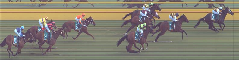 Donald Race 7 No.4 Royal Ace @ $2.60 (2.5 UNITS WIN)   Result :  4th  at SP $2.35. After seeing clear room at the turn when Romancer made a mini break, Royal Ace had no answers. Outcome -2.50 Units.  ⭐Donald Race 7 No.5 Romancer @ $6.50 (0.91 UNIT WIN)   Result : Non Qualifier - 1st at SP $8.50, Best Tote $9.90, Betfair $13.00.  ⭐Donald Race 7 No.7 Fastnet Latina @ $3.80 (1.79 UNIT WIN)   Result : 2nd at SP $3.00. After trailing the winner for majority of race, Romancer get a mini break at the 300m mark which eventually proved too hard for Fastnet Latina to make up.  Though due to advice below this was a no bet . If you didn't take the advice, Outcome -1.79 Units.  Donald Race 7 No.10 Azurite @ $23 - price unlikely   Result : Non Qualifier - Unplaced at SP $101.00  Donald Race 7 No.12 Pow Wow @ $26 - price unlikely   Result : Non Qualifier - Unplaced at SP $61.00   Side Note : Quinella on Super Tab paid $11.60, Exacta $34.50.   NB:  The three qualifiers are a losing situation if we bet them all (even if we win the race). On our ratings, Royal Ace is an overlay so I suggest we back that selection ONLY for the win at these current prices (and maybe you have the others in exotics in an RewardBet?). However if the prices change before the race, the profitability of backing the qualifiers could also change, especially if they all drift - so monitor that.