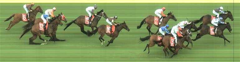Sandown Race 8 No.16 Discreet Charm @ $11 - watch price   Result:  Non Qualifier - Unplaced at SP $21.00