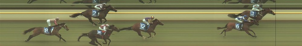 Terang Race 3 No.5 Malevolent @ $4.20 (1.57 UNITS WIN). Again with DY, if he can get across from the barrier and over 1000m and some good support this AM.   Result :  4th  at SP $4.80. Got to the outside in the straight and despite hitting the line well, was too far back to be a winning hope. Outcome -1.57 Units.