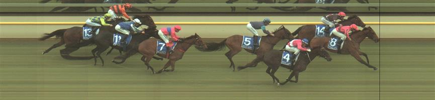 Terang Race 5 No.10 Skalacci @ $6.50 (0.91 UNITS WIN).   Result:  Unplaced at SP $7.50. Settled towards the tail of the field and while had a clear run home couldn't make any headway on the winners. Never a winning hope in the run. Outcome -0.91 Units.