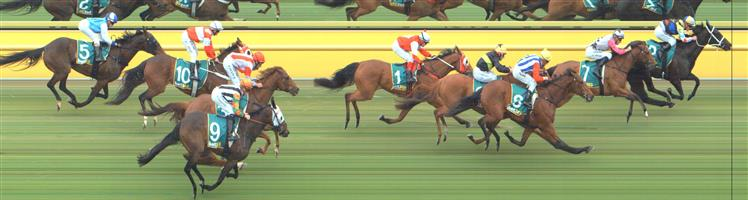 Ararat Race 1 No.1 Anythings Possible @ $34 - price unlikely   Result:  Non Qualifier - Unplaced at SP $21.00
