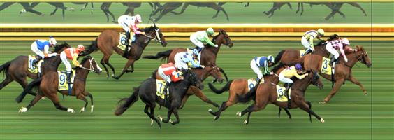 Sandown Race 5 No.11 River Jewel @ $6 (1 UNIT WIN)   Result: 2nd  at SP $8.00. After sitting third behind the leaders, joined in at the 400m mark, received a bump or two up the straight from the eventual third place horse, tightened for room as well and only went down by a neck. A little cleaner run and it could have been a different story. Outcome -1.00 Units.