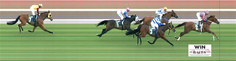 Morphettville Race 3 No.5 Sickening @ $4.60 (1.39 UNITS WIN) NB: Dean Yendall is on this and as over a distance I'm undecided if I will back it right now. I will watch market prior to race and potentially provide my thoughts in Slack group.   Result : Advised a bet via our Official Communications channel after Adl R2. Vetted prior to the start after playing up in the barriers & was scratched.