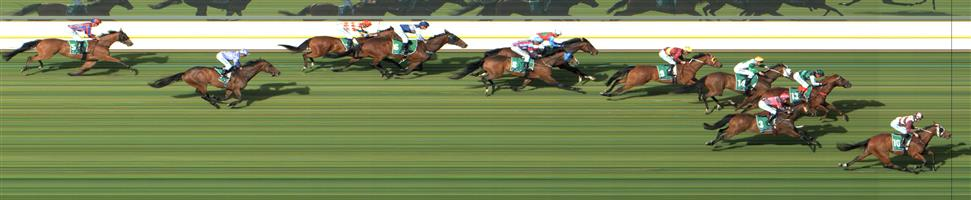 ↗️Warrnambool Race 9 No.9 Spicer @ $6 (1 UNIT WIN)   Result : Non Qualifier. Unplaced at SP $10.00