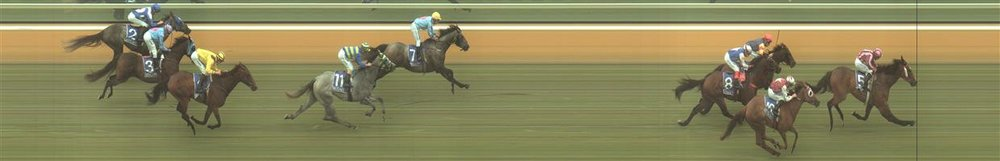 Hamilton Race 1 No.10 Maunahost @ $11 - watch price   Result:  Non Qualifier – 2nd at SP $14.00
