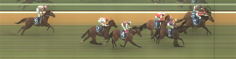 Hamilton Race 2 No.4 Offsett @ $4.40 (1.48 UNITS WIN)   Result : Unplaced at SP $2.60. Even though made late ground coming from the back, was too far back to be a winning hope. Outcome -1.48 Units.