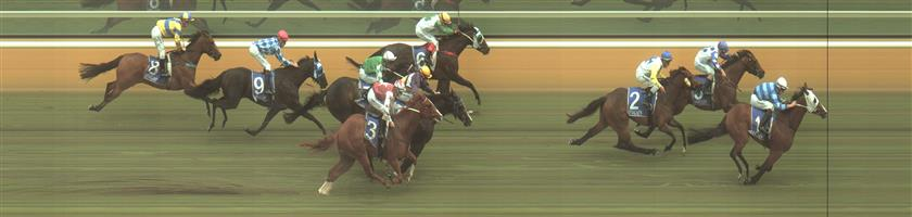 Hamilton Race 3 No.3 Poony @ $51 - price unlikely   Result : Non Qualifier - Unplaced at SP $31.00  Hamilton Race 3 No.7 Yulong Awesome @ $20 - price unlikely   Result : Non Qualifier - Unplaced at SP $16.00
