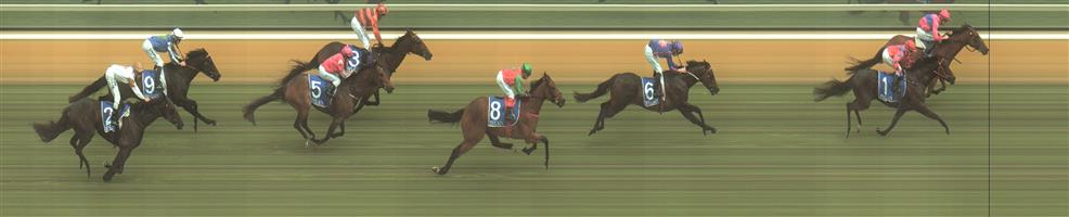 Hamilton Race 4 No.8 Veloucher @ $5.50 (1.12 UNITS WIN)   Result : 4th at SP $2.80. From the back, went wide on the turn, encountered a little traffic though despite never lookiing like winning, hit the line well. Outcome -1.12 Units.  NB: Additional selection for Tuesday:   📫 HAMILTON Race 4 No. 6 Westham @ $3.50 (1.5 UNITS WIN)   Result : 3rd at SP $3.80. One of the widest on the turn coming from the back, had clear running just no match for the winner. Outcome - 1.50 Units.