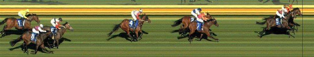 Sandown Race 5 No.6 Sarkozy @ $16 - price unlikely   Result : Non Qualifier - Unplaced at SP $26.00