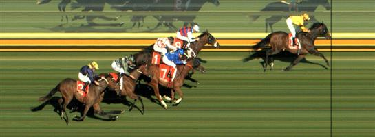 Sandown Race 6 No.6 Waking Moment @ $13 - watch price   Result : Non Qualifier - Unplaced at SP $13.00