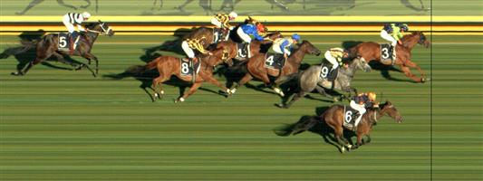 Sandown Race 7 No.10 Zelsignoret @ $5 (1.25 UNITS WIN)   Result : Unplaced at SP $4.60. Settled in fourth but tired late after being off the bit early trying to chase the leader and eventual winner, Saucy Jack who pinched an early lead and never surrendered it. Tired late. Outcome -1.25 Units.