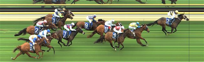Pakenham Race 3 No.10 Teodora @ $12 - watch price   Result : Non Qualifier – Unplaced at SP $16.00