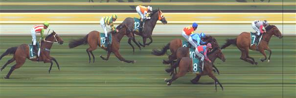 Stawell Race 3 No.9 Malawi Gold @ $2.70 (1.50 Units)   Result : 3rd at SP $2.70. Sitting behind the leader, got room to peel out on the turn. Though leader and eventual winner, Lord Of Darkness, had a kick on the turn and produced a winning break. Outcome –1.50 Units.