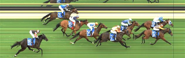 Stawell Race 4 No.8 Maheera @ $9.50 - watch price   Result : Unplaced at SP $7.00. From the back had a little traffic on the turn though gaps appeared soon after and had every chance, just not good enough. Outcome -0.83 Units.