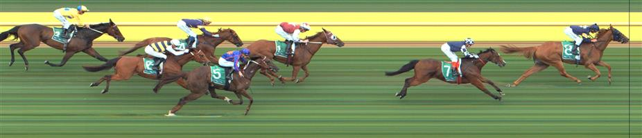 Werribee Race 6 No.5 Andrea Mantegna @ $10 - watch price   Result : Non Qualifier – 4th at SP $16.00  Werribee Race 6 No.6 Master Zephyr - @ $18 - price unlikely   Result : Non Qualifier - Unplaced at SP $21.00