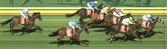Sandown Race 3 No.5 Write Your Name @ $1.55 (1.5 UNITS WIN)   Result :  2nd  at SP $1.65. Caught in a pocket and by time it got out and found clean air at the 100m mark, it was all too late. Outcome -1.50 Units