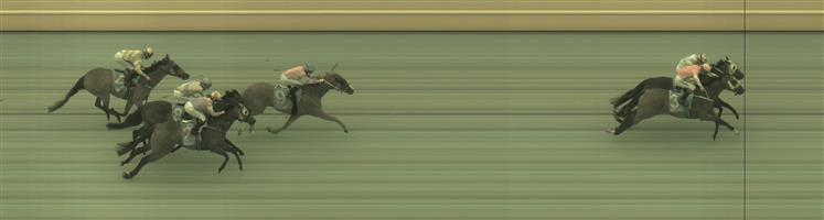 📫 WARRNAMBOOL Race 8 No. 7 Indian Thunder @ $5 (1.25 UNITS WIN)   Result :  2nd  at SP $6.50. While everyone went wide at the turn, Indian Thunder cut the corner and hit the lead. Unfortunately couldn't hold on in the inferior ground going down by a nose in a close photo finish. Outcome -1.25 Units.   📫 WARRNAMBOOL Race 8 No. 8 Wetakemanhattan @ $3.40 (1.5 UNITS WIN)   Result : Unplaced at SP $2.80. Was leading on he turn though went to the middle of the track and lost track of the leaders to finish midfield. Outcome -1.50 Units.