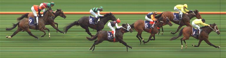 Flemington Race 2 No.5 Kaplumpich @ $5.50 (1.12 UNITS WIN)   Result:  Non Qualifier - 3rd at SP $8.50