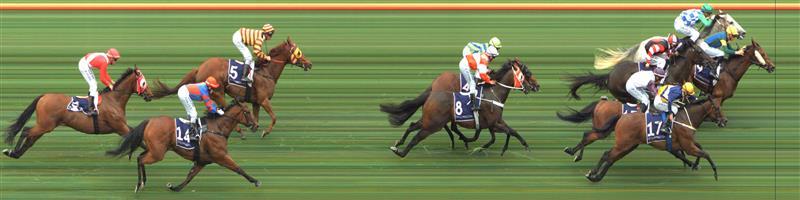 Flemington Race 4 No.16 Cash Affair @ $7 (0.84 UNITS WIN)   Result:  Non Qualifier - 2nd at SP $9.00