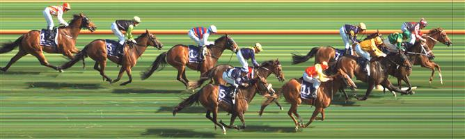 Flemington Race 8 No.6 The Gatting Ball @ $8.50 - watch price   Result:  Non Qualifier – Unplaced at SP $8.50