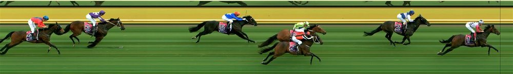 Horsham Race 4 No.6 Keysor @ $2.90 (1.5 UNITS WIN)   Result :  3rd  at SP $4.80. After sitting behind the leaders, just touch on the turn though did run home respectfully to run third. Outcome -1.50 Units.