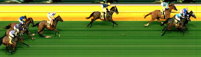 Moonee Valley Race 2 No.6 Yulong August @ $15 - watch price   Result : Non Qualifier - Unplaced at SP $17.00