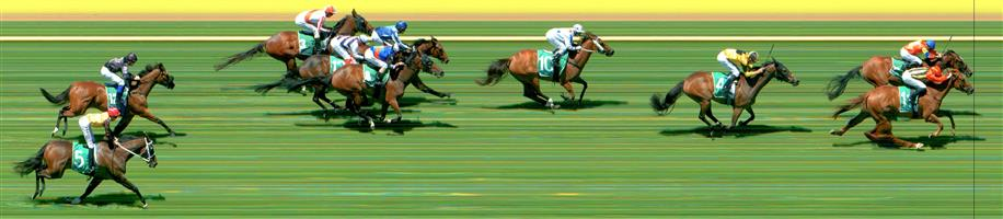 Werribee Race 5 No.6 Malawi Gold @ $2.80 (1.5 UNITS WIN)   Result :  2nd  at SP $2.00. From a forward position took a narrow lead on the turn and held that lead until the line when the winner, Betty Of Grable, collared it and won. Outcome -1.50 Units.  Werribee Race 5 No.7 Swiss Hero @ $26 - price unlikely   Result : Non Qualifier - Unplaced at SP $41.00