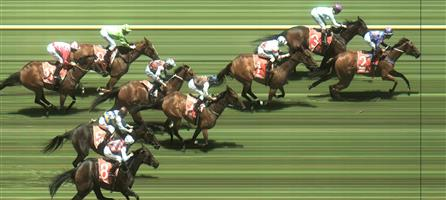 Caulfield Race 1 No.6 Sworn Evidence @ $7 (0.84 UNITS WIN)   Result : Unplaced at SP $7.00. Sat three wide with cover during the run. In the straight ran without necessary dash and finished midfield. Outcome -0.84 Units.  Caulfield Race 1 No.7 No Reward @ $15 - price unlikely   Result:  Non Qualifier – 4th at SP $17.00