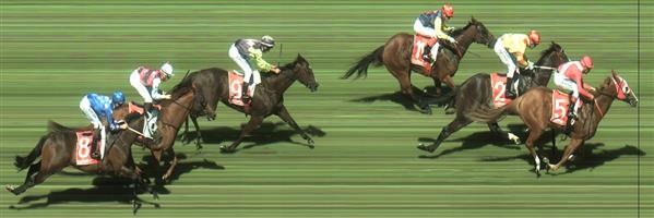 Sandown Race 7 No.2 Hawkshot @ $2 (1.5 UNITS WIN)   Result : 2nd at SP $1.85. Sat outside the leader and was keen in the run. In the home straight, looked very green, including becoming unsettled at shadows and this greeness probably cost it the race losing by half a length. Outcome -2.02 Units.  3.05  Sandown Race 7 No.3 Fabians Spirit @ $4.60 (1.39 UNITS WIN)   Result : Scratched at the barriers  NB: Since the pricing is tight in this race, we are using RewardBet to guide our staking. As such our total outlay is 2.9 UNITS and we suggest 2.02 UNITS on #2 and 0.88 UNIT on #3 which will return 4.04 UNITS if either runner WINS.