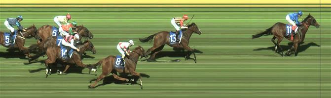 SANDOWN HILLSIDE Race 8 No. 9 Six Sigma @ $13 - watch price   Result : Non Qualifier - Unplaced at SP $16.00