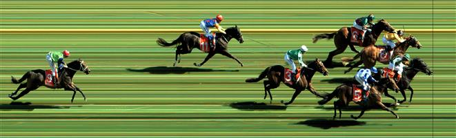 Caulfield Race 3 No.3 Yulong September @ $5.50 (1.12 UNITS WIN)   Result : Unplaced at SP $7.00. Coming from the last part of small field, ran well once straightened in the final 200m and hitting the line well but never a real winning chance. Outcome -1.12 Units.
