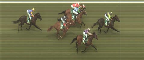 Geelong Race 7 No.6 Cheeky Reward @ $21 - price unlikely   Result : Non Qualifier - Unplaced at SP $17.00