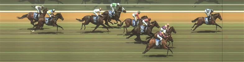 🏆🏆🏆🏆🏆🏆 Hamilton Race 2 No.4 Swiss Hero @ $8 (0.72 UNIT WIN)   Result :  1st  at SP $5.50, Best Tote $5.70, Betfair $5.61. Sat about a length behind the leader at the turn. Found clean air in the straight, took the lead at the 150m and drew clear to score by over a length on the line. Outcome +5.76 Units  Hamilton Race 2 No.5 Yulong Awesome @ $4.80 (1.32 UNITS WIN)   Result : Unplaced at $7.50. Was the leader until the 150m mark when taken over firstly by Swiss Hero to eventually finish in the second half of the field. Outcome -1.32 Units.