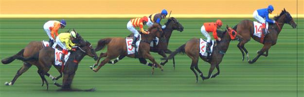 Sandown Race 7 No.10 Think Babe @ $13 - watch price   Result : Non Qualifier - Unplaced at SP $12.00