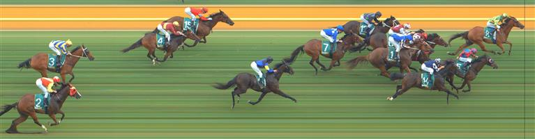Geelong Race 3 No.6 Malevolent @ $6.50 (0.91 UNIT WIN)   Result : Unplaced at SP $8.00. After sitting the behind the leaders and eventual winner, Rewalia (SP $18.00), couldn't find the acceleration in the straight as the leader kept on kicking and Malevolent was swamped late to just miiss out on the placings. Outcome -0.91 Units.  Geelong Race 3 No.11 Zee Rebel @ $14 - watch price   Result : Non Qualifier - 4th at SP $11.00.