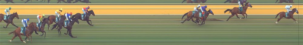 ARARAT Race 8 No. 8 Zaide @ $17 - price unlikely   Result : Non Qualifier - 3rd at SP $10.00