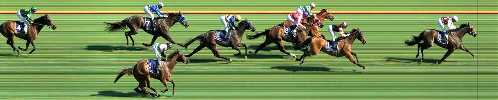 Flemington Race 8 No.9 Fastnet Latina @ $10 - watch price   Result : Non Qualifier – Unplaced at SP $13.00