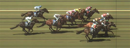 Warrnambool Race 4 No.3 Low Level Flying @ $3.80 (1.5 UNITS WIN) (Beteasy Offer)   Result : Unplaced at SP $3.80. After travelling behind the speed, was three wide on the turn, hit the front briefly before being collared late to finish around midfield in a close finish. Outcome -1.50 Units.  Warrnambool Race 4 No.6 Freestyler @ $21 - price unlikely   Result : Non Qualifier - Unplaced at SP $9.50.  Warrnambool Race 4 No.7 Shoeed @ $5.50 (1.12 UNITS WIN)   Result : Unplaced at SP $6.00. Settled midfield. Went wide on the turn with its run but found little and finished at the tail of the field. Outcome -1.12 Units.  Warrnambool Race 4 No.8 Skilled Edition @ $19 - price unlikely   Result : Non Qualifier - Unplaced at SP $51.00  Warrnambool Race 4 No.10 Tassie Oreilly @ $26 - price unlikely   Result : Non Qualifier - Unplaced at SP $21.00