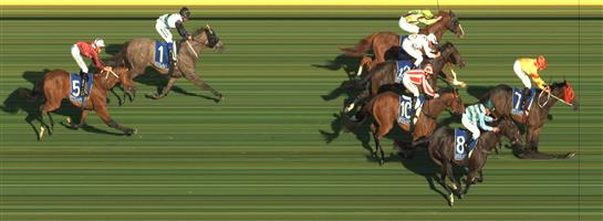 Pakenham Race 2 No.5 Kilgour @ $15 - watch price   Result : Non Qualifier - Unplaced at SP $13.00