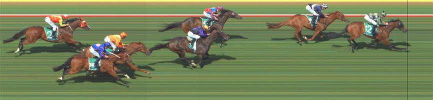 WERRIBEE Race 5 No. 16 Destined To Boom @ $15 - watch price   Result : Non Qualifier - Unplaced at SP $21.00