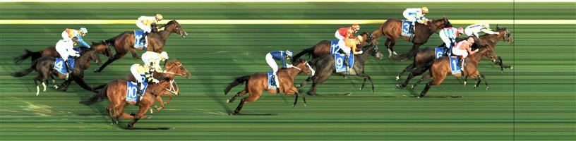 RACING.COM PARK Race 4 No. 2 Bakery Hill @ $14 - watch price   Result : Non Qualifier - Unplaced at SP $26.00