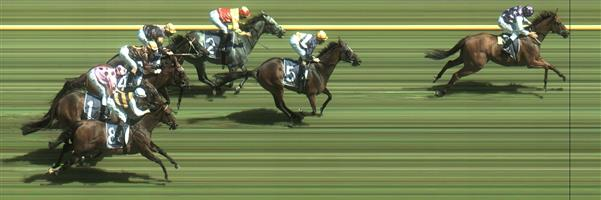 Caulfield Race 6 No.8 Fastnet Latina @ $13 - watch price   Result:  Non Qualifier - Unplaced at SP $12.00
