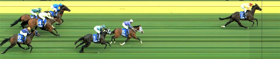 CAULFIELD Race 7 No. 6 Declares War @ $7 (0.84 UNIT WIN)   Result : Non Qualifier - Unplaced at SP $9.00