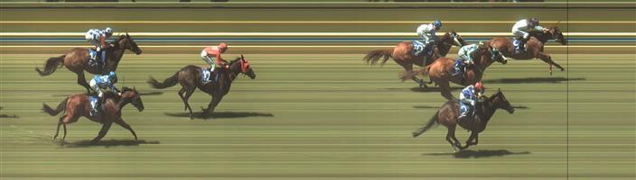 BENDIGO Race 3 No. 11 Sunbelt @ $10 - watch price   Result : Non Qualifier - Unplaced at SP $12.00.