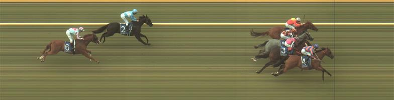 WARRNAMBOOL Race 2 No. 1 Absolut Artie @ $11 - watch price   Result : Non Qualifier - 4th at SP $9.00
