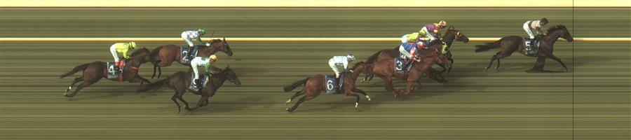 🏆🏆🏆🏆🏆🏆 WARRNAMBOOL Race 6 No. 5 Wetakemanhattan @ $3.80 (1.5 UNIT WIN)   Result: 1st  at SP $3.40, Best Tote $3.50, Betfair $3.54. Had the rails in second position as the leader sat on the outside. On the turn put a length or so on the leader and kept finding in the straight to win by a length. Outcome +5.70 Units.  WARRNAMBOOL Race 6 No. 6 Greycliffe @ $11 - watch price   Result:  Non Qualifier - Unplaced at SP $13.00