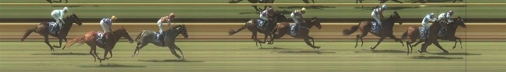 BENALLA Race 1 No. 1 Absolut Artie @ $3.40 (1.5 UNITS WIN)   Result : Unplaced at SP $4.20. Settled in third, one off the rails in a nice trail from the leaders. Rolled forward prior to the turn sitting three wide in a share of the lead however it hit its peak early in the straight and finished with the other leaders towards the tail of the field. Outcome -1.50 Units.