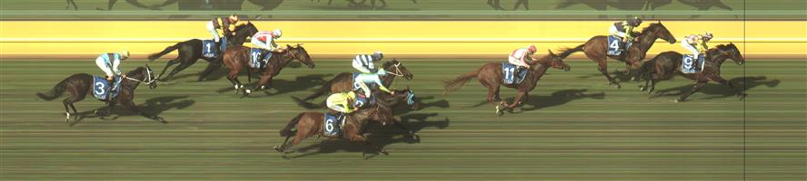 KYNETON Race 8 No. 6 Astrological @ $9 - watch price   Result : Non Qualifier - Unplaced at SP $8.50.